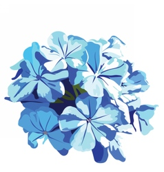 Watercolor Blue flowers bouquet vector image vector image