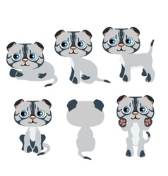 Cute cartoon gray kitten for animation pets vector