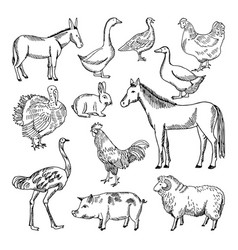 farm animals set in hand drawn style vector image