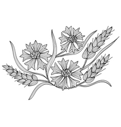 Decorative cornflower and wheat vector