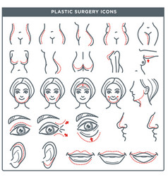 plastic surgery line icons for woman body vector image