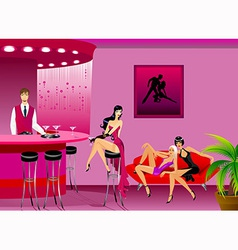 Women in a bar vector