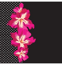 Floral pattern with beautiful flowers hand-drawing vector