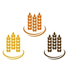 abstract wheat ears vector image vector image