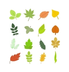Summer and Autumn Leaves Set vector image