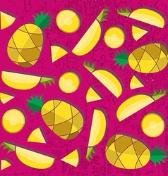 Colorful of pineapple slices vector