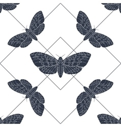 Hand drawn hawk moth seamless pattern vector image vector image