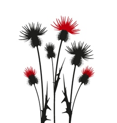 thistle vector image