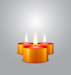 Christmas candles burning vector image