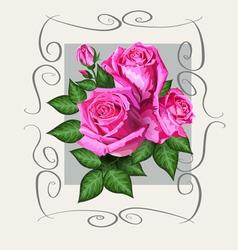 Roses vintage copy vector image vector image