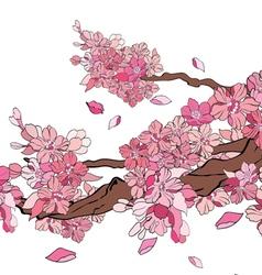 Sakura 1 vector