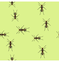 Trails of ants vector