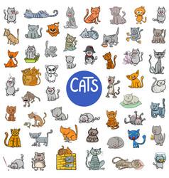 cartoon cat characters large set vector image