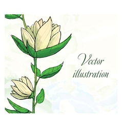 Floral design template Watercolor hand drawn vector image