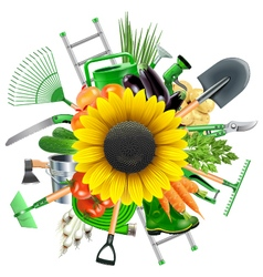 Garden accessories with sunflower vector