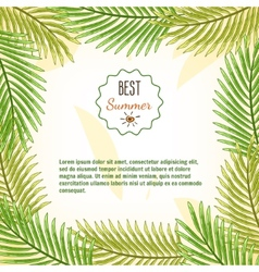 Frame of palm branches best summer background vector