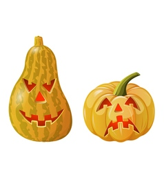 Two pumpkins vector
