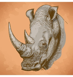 Engraving rhino retro vector