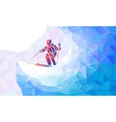 Giant Slalom Ski Racer silhouette vector image vector image