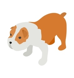 Staffordshire terrier icon isometric 3d style vector