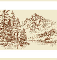 alpine landscape river and pine forest sketch vector image