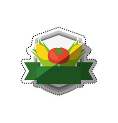 fresh and healthy vegetables vector image