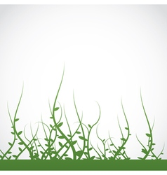 Growing vines background vector