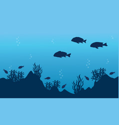 Landscape of fish and reef vector