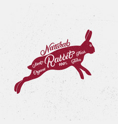 rabbit silhouette and hand written lettering vector image vector image