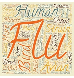 Bird flu explained text background wordcloud vector