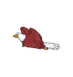 Bald eagle flying cartoon vector