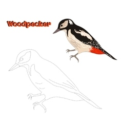 Educational game connect the dots to draw bird vector