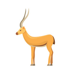 antelope isolated on white background african vector image vector image