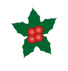 christmas decoration leaves and berries image vector image