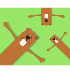 Groundhogs lying on grass spring background vector