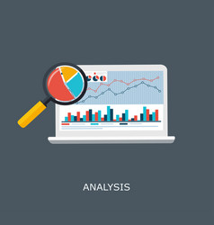 web analytics information and development website vector image