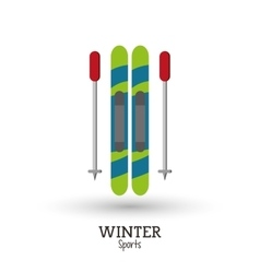 Skies winter sport design vector
