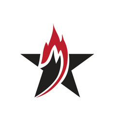 flam star logo vector image