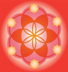 Sacred geometry red flower vector