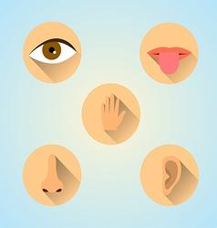 Senses icons vector