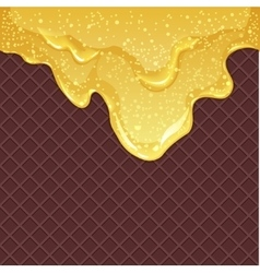 Waffle background with honey vector image