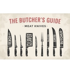 Meat cutting knives set poster butcher diagram vector