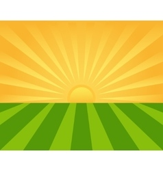 Sunrise on the green field vector