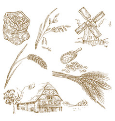 Cereals set hand drawn windmill wheat oats vector