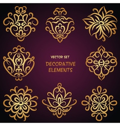 Decorative ethnic golden elements vector image vector image