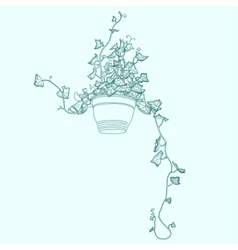 Drawing of green ivy in flowerpot vector image