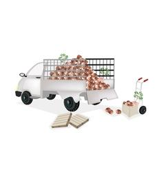 Hand truck loading fresh taro into pickup truck vector