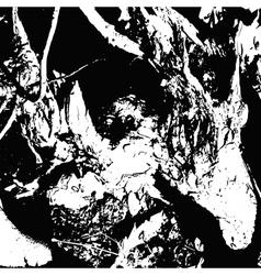 Roots vector