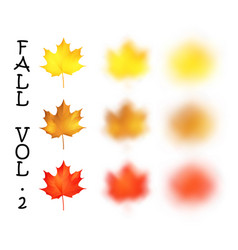 falling realistic maple leaves set with blured vector image vector image