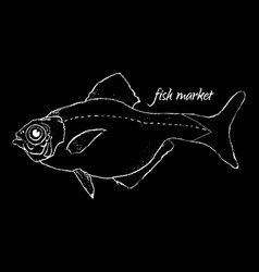Fish market logo vector